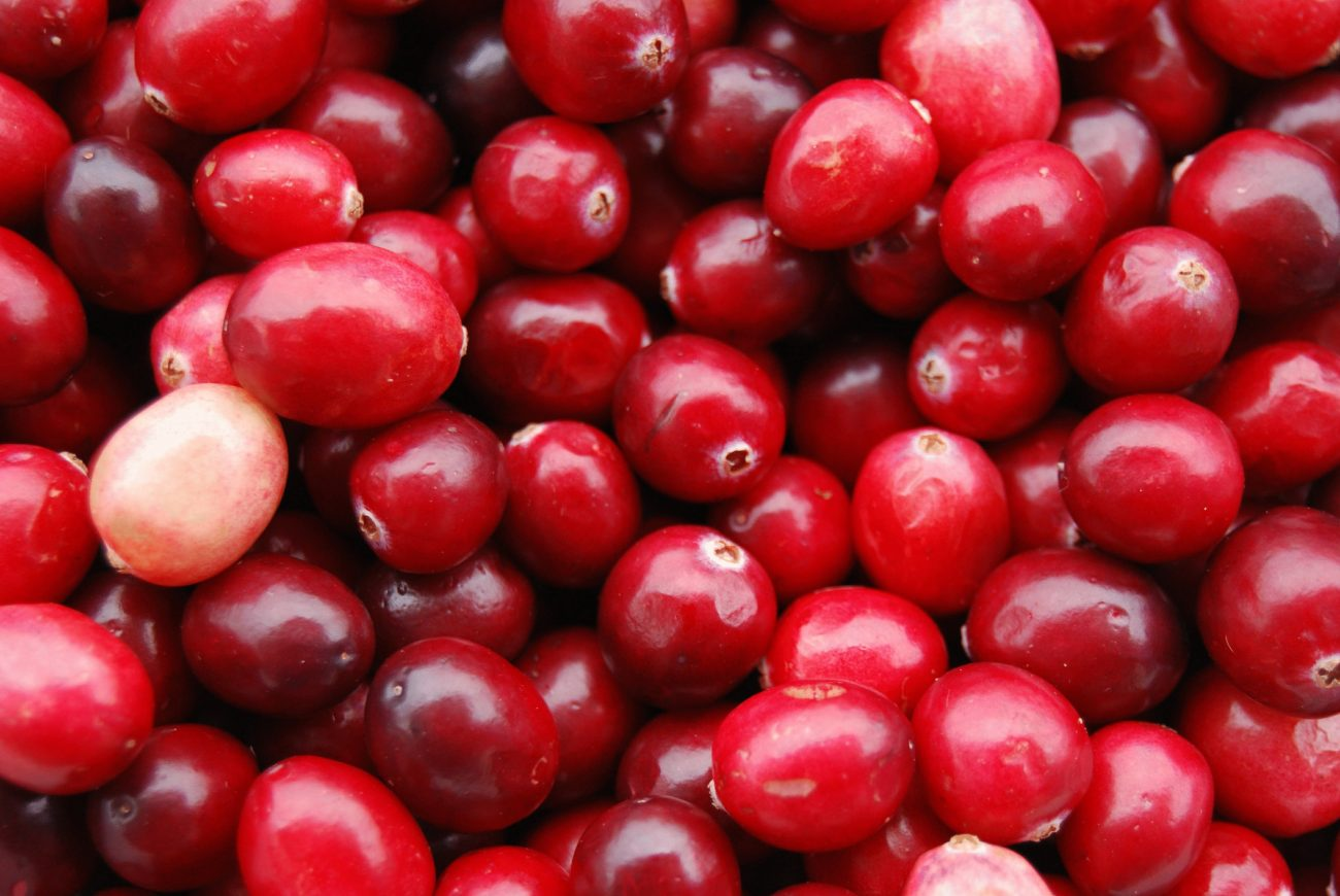 20130405172240 - Югороские дикоросы пойдут в бизнес: в округе появятся плантации лесных ягод