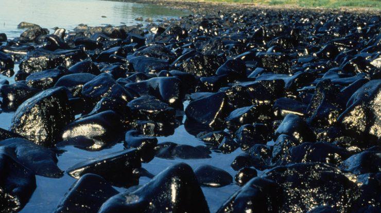 acidente Exxon canla da preven o 740x415 - Экологическое ЧП: в Югре природный парк «Кондинские озера» залило нефтью
