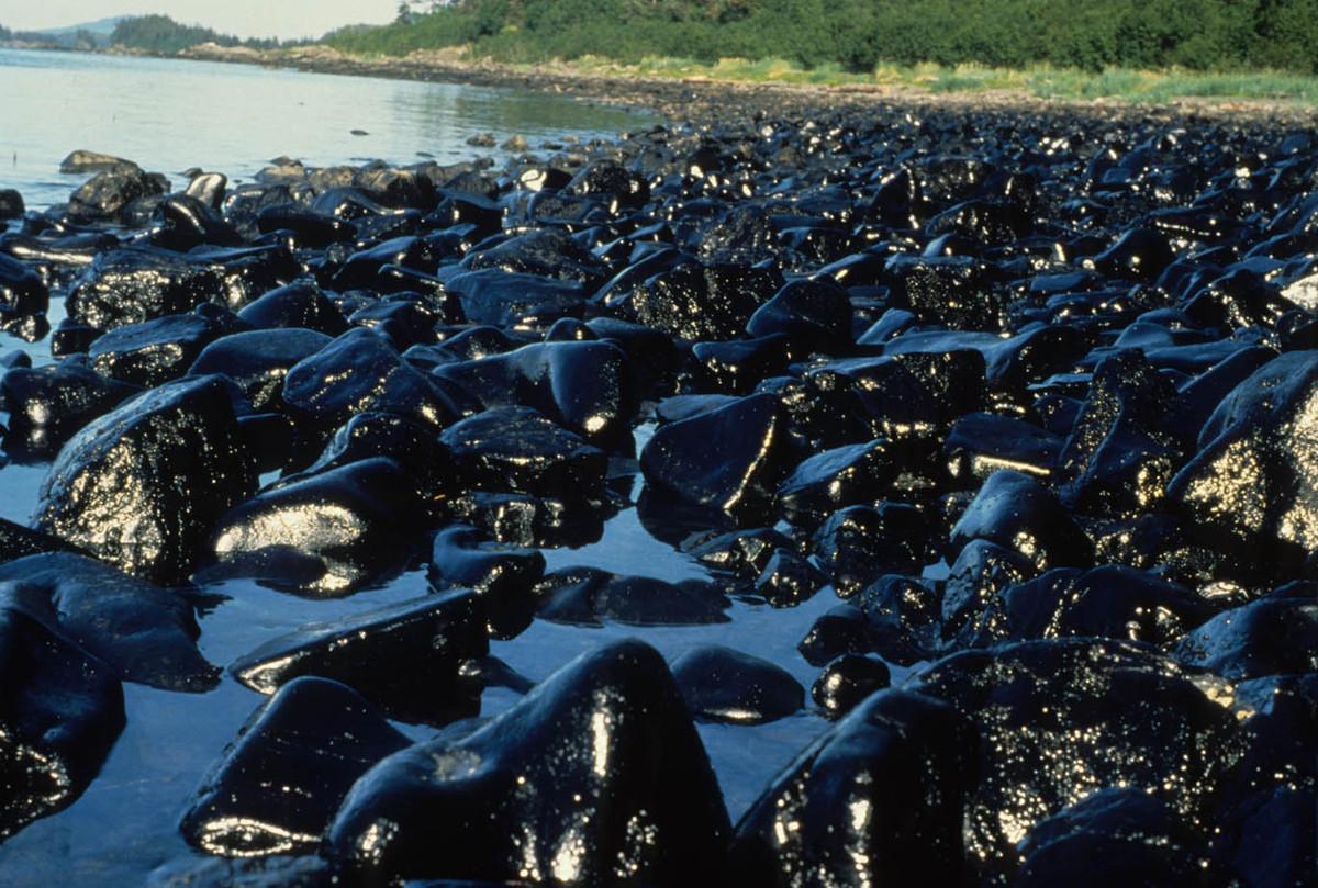 acidente Exxon canla da preven o - Экологическое ЧП: в Югре природный парк «Кондинские озера» залило нефтью