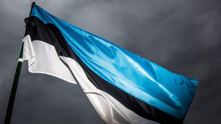 estonian flag 74797862 740x415 - Тяжелая форма бреда: Эстония заявила, что отберет у России Санкт-Петербург, Омск и Томск