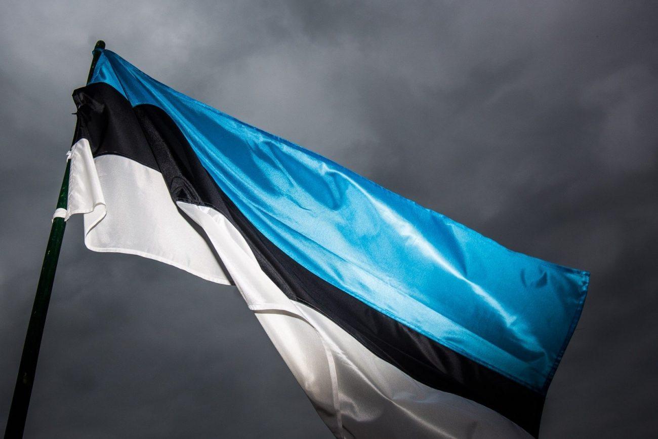 estonian flag 74797862 - Тяжелая форма бреда: Эстония заявила, что отберет у России Санкт-Петербург, Омск и Томск