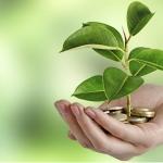 Новый экологический налог коснется даже индивидуальных предпринимателей