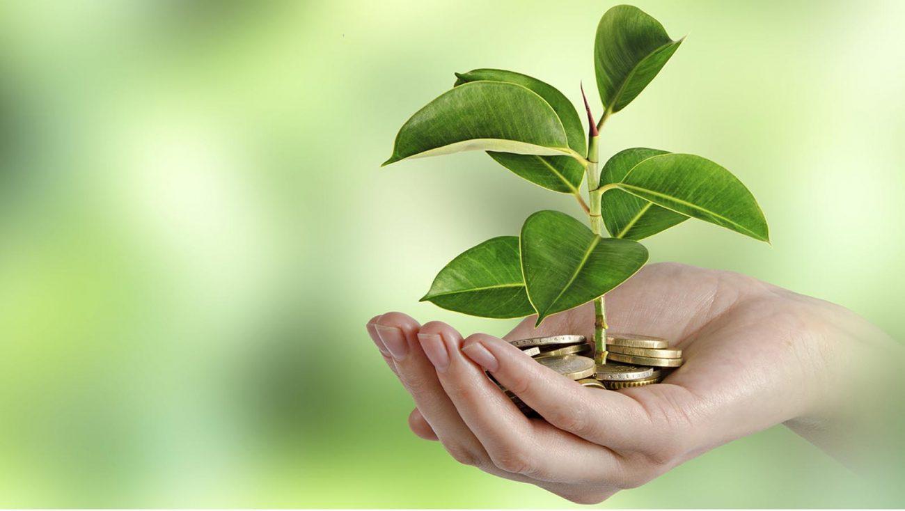 grants - Новый экологический налог коснется даже индивидуальных предпринимателей